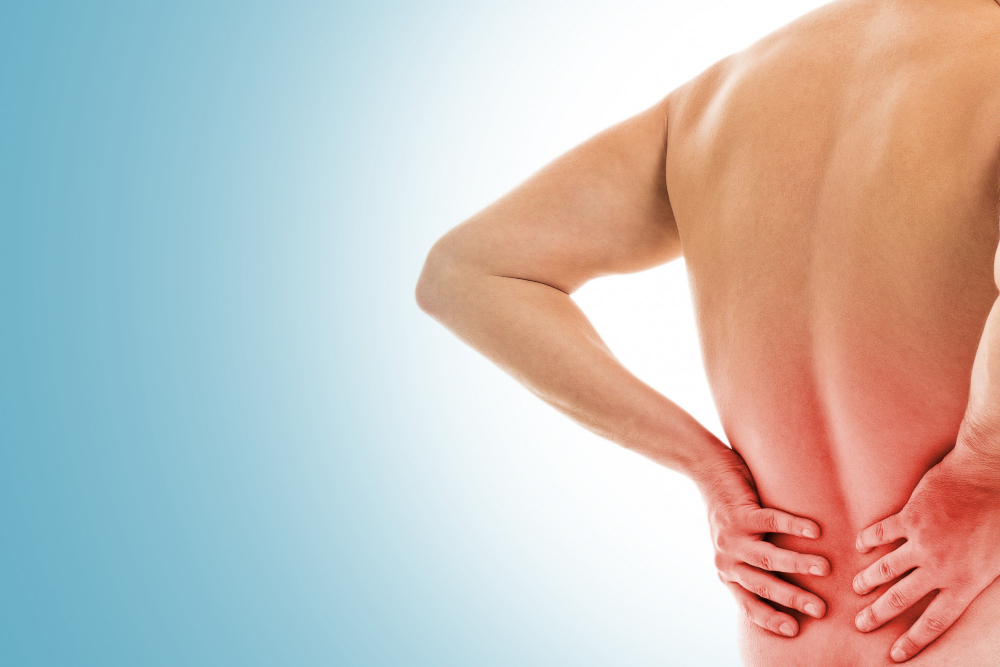 Pro-Inflammatory Diet Associated with Low Back Pain Prevalence in U.S. Adults